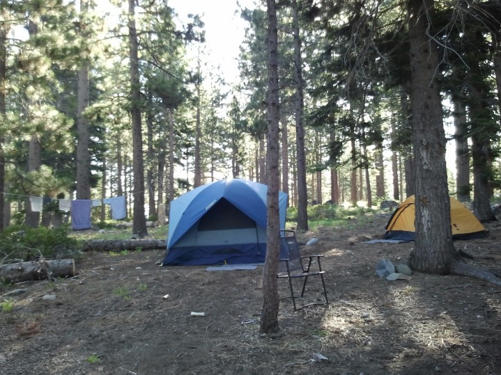 Camp Shelly's Site 23