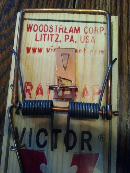 Rat Trap 4