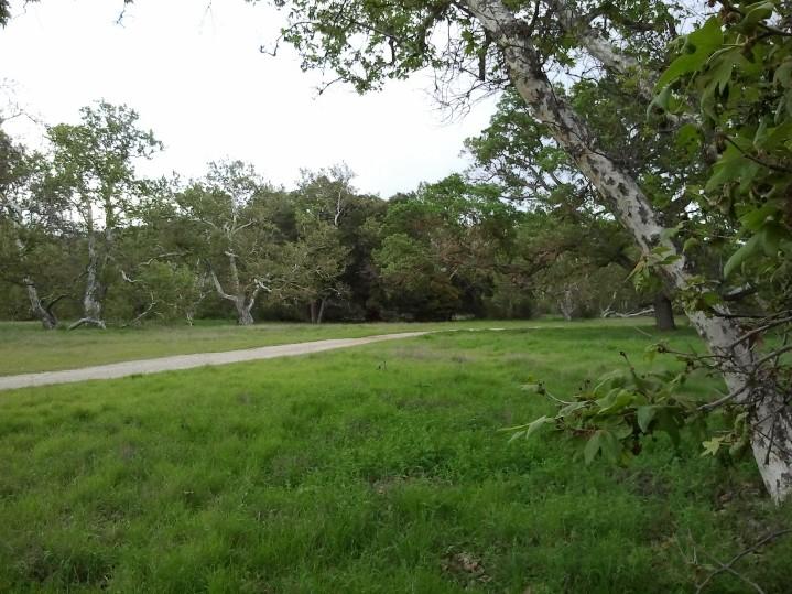 LARPD SGP Nature Area 1