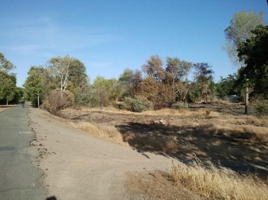 Arroyo Mocho Fire 1