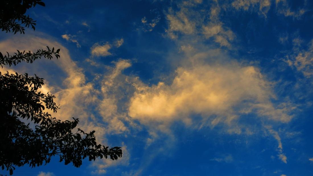 redneckgarage.net evening sky
