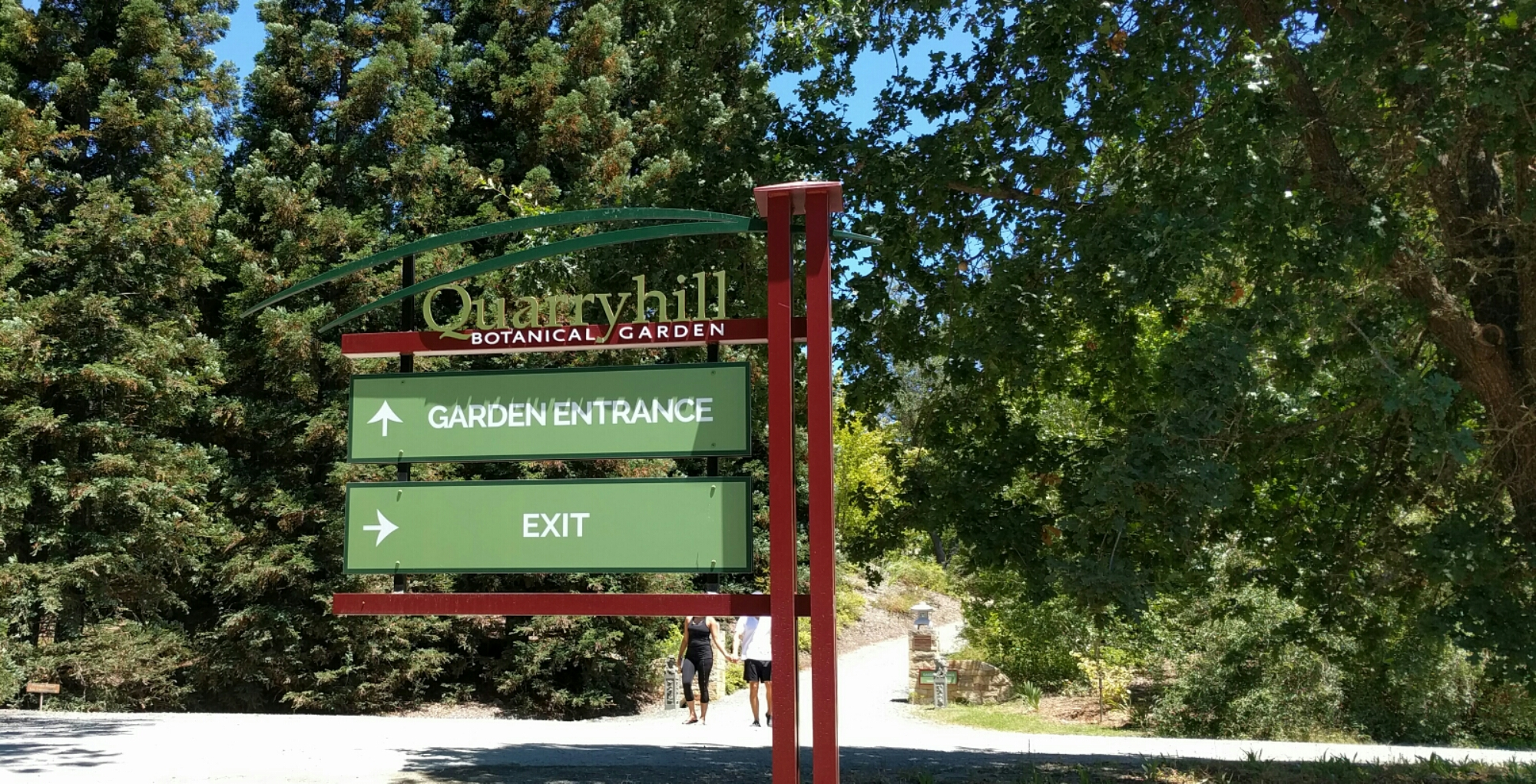 Lisa And I Drove North To Glen Ellen To Explore The Quarryhill Botanical  Garden.