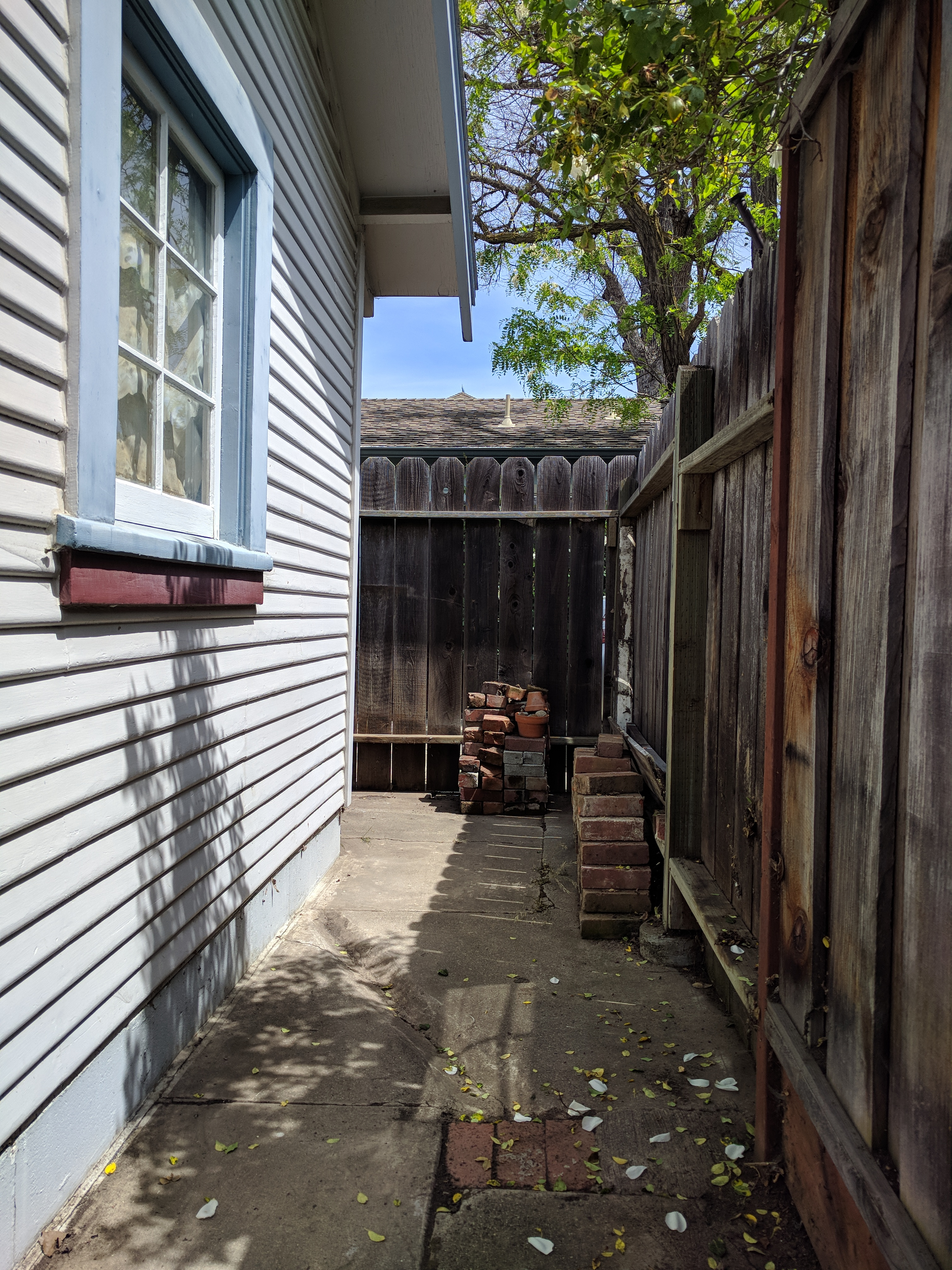 This Area Behind The Red Dog Garage Had Been A Collection Of Lumber, Pots,  And Just About Anything That Could Be Used But Never Was.